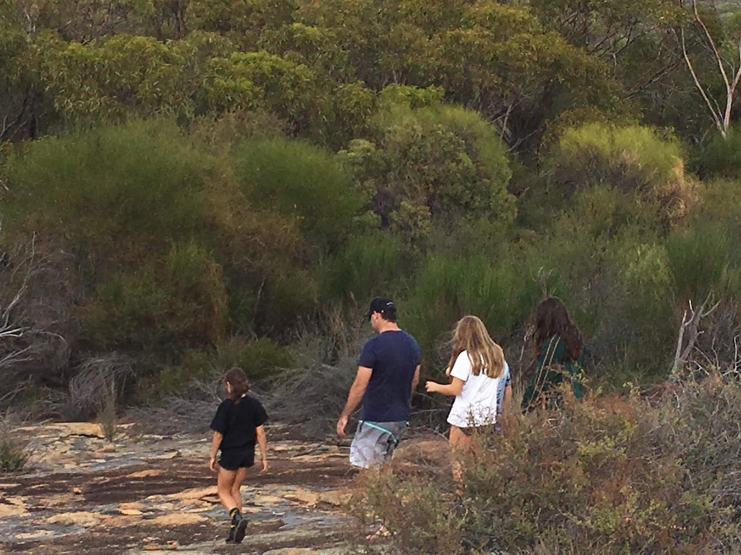 Exploring the Bushland